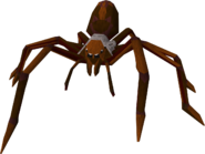 Huge spider