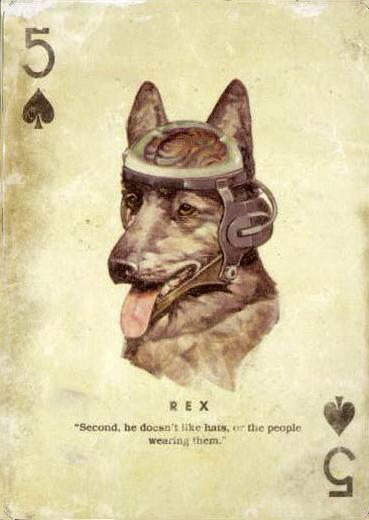 Perros para la guerra
