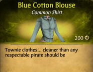 Blue Cotton Blouse