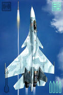 ACAHTF Su-33D