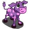 Purple Valentine Calf-icon