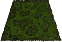 Forest Overgrowth Map
