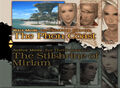 Final-fantasy-xii-demo.jpg
