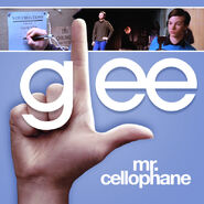 Glee - mr celo