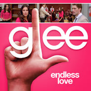 Glee - endless love