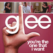 Glee - the one that i want