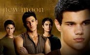 New-moon-2323-wolf pack