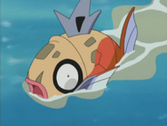 Jessie Magikarp One