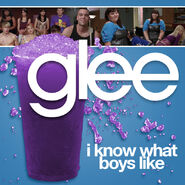 Glee - Boys Like