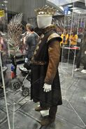 Wondercon-costume-robert