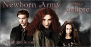 Newborn-army-graphic