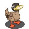 Campbell Duck-icon