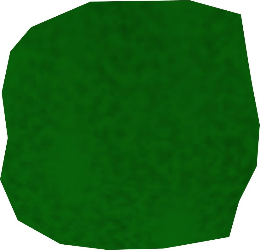 Green dragon leather detail.png