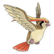 018Pidgeot