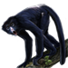 Item spidermonkey 01