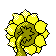 Sunflora GenII Back Shiny