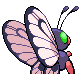 Butterfree GenIV F Shiny back