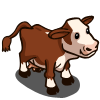 Hereford Cow-icon