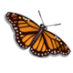 Butterfly (Collection)-icon
