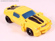 R legendsbumblebee015