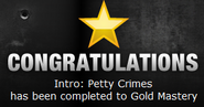 Petty Crimes Gold
