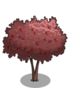Cherry Plum Tree2-icon
