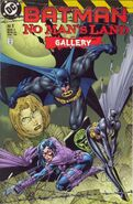 Batman No Man's Land Gallery 1
