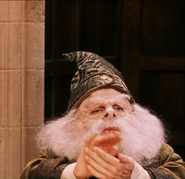 Prof Flitwick