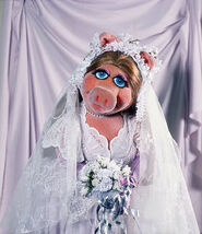 Wedding-piggy