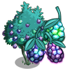 Giant Gem Fruit-icon