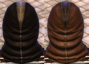 Leather Brown Dye