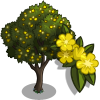 Gorse Tree-icon