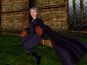 Madam Hooch (PC)