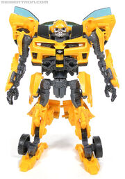 R bumblebee-066