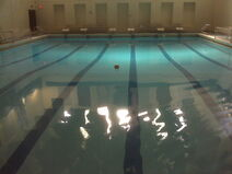 Swim pool Peabody ball