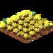 Daisies.png amarillo