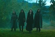 Volturi Guard