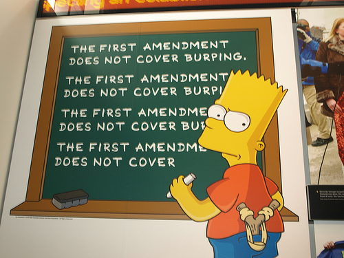 http://images1.wikia.nocookie.net/__cb20110617053647/simpsons/images/1/1b/The_First_Amendment_does_not_cover_burping..jpg