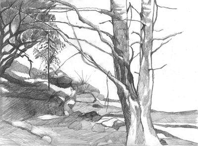 400px-Karoo_landscape_by_ludachris3110-d32fa83.jpg