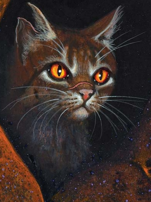fallendes blatt warrior cats