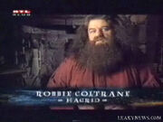 Robbie Coltrane as Hagrid
