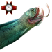 Item dragonfish 02
