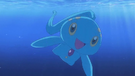 P12 Manaphy
