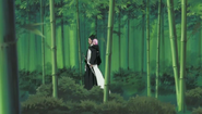 Kenpachi and Yachiru walk through bamboo forest