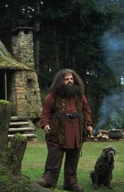 Hagrid l