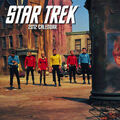 Star Trek Calendar 2012 cover.jpg