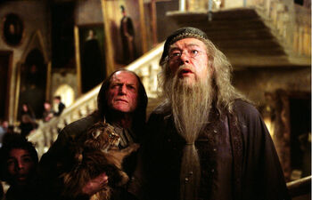 Albus-filch