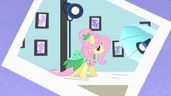 Fluttershy photoshoot 2 S1E20