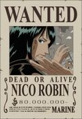 Wanted de Robin