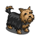 Yorkie-icon